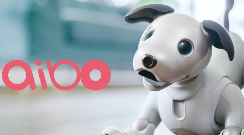 Aibo | Фото: Sony