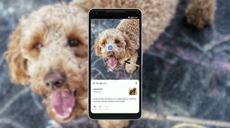 Google Lens | Фото: Google