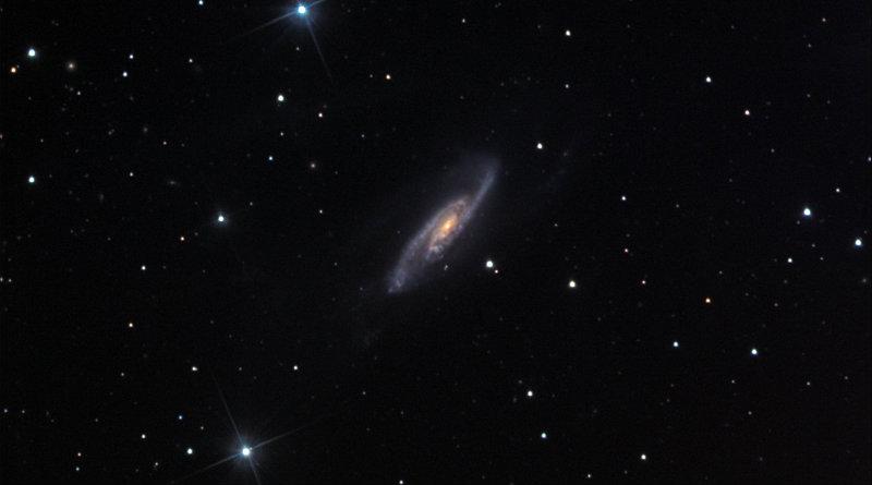 NGC 3981 | Фото: caelumobservatory