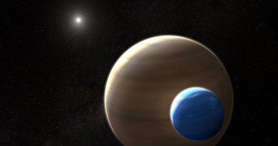 Экзолуна | Фото: NASA