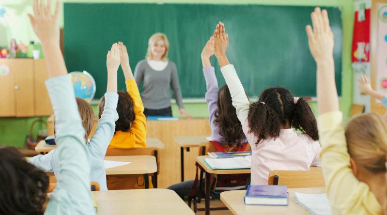 Школа | Фото: illibraio
