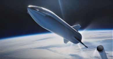 SpaceX Starship | Фото: teslarati