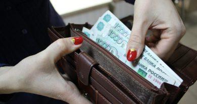Кошелек | Фото: bash.news