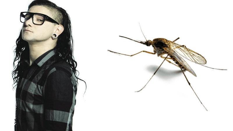 Skrillex и комар