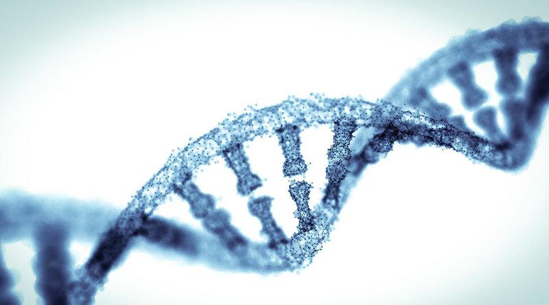 ДНК | Фото: twitter