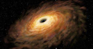 Фото: https://www.sciencenews.org/